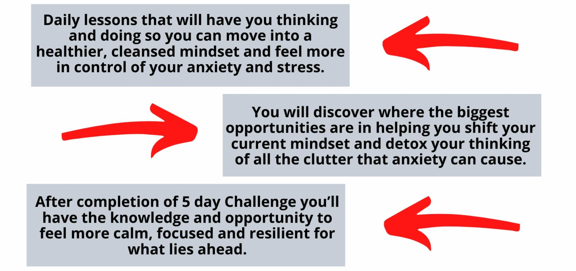 5 Day Anxiety Detox Challenge